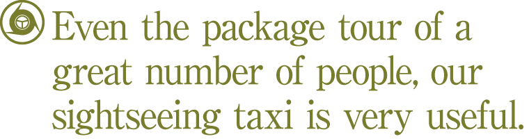 Even the package tour of a great number of people, our sightseeing taxi is very useful.